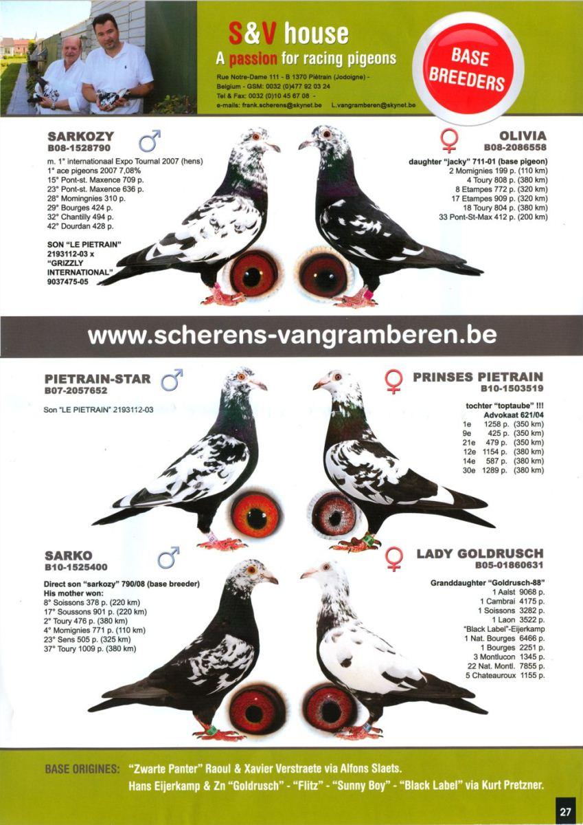 Louis Vangramberen Brieftauben Markt ONexpo 5