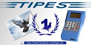 tipes Produkte Brieftauben Markt ONexpo 3