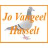 Vangeel Zuechter Brifetauben Markt Logo