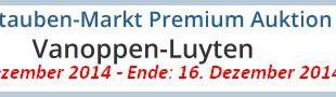 PREMIUM AUKTION - Vanoppen-Luyten