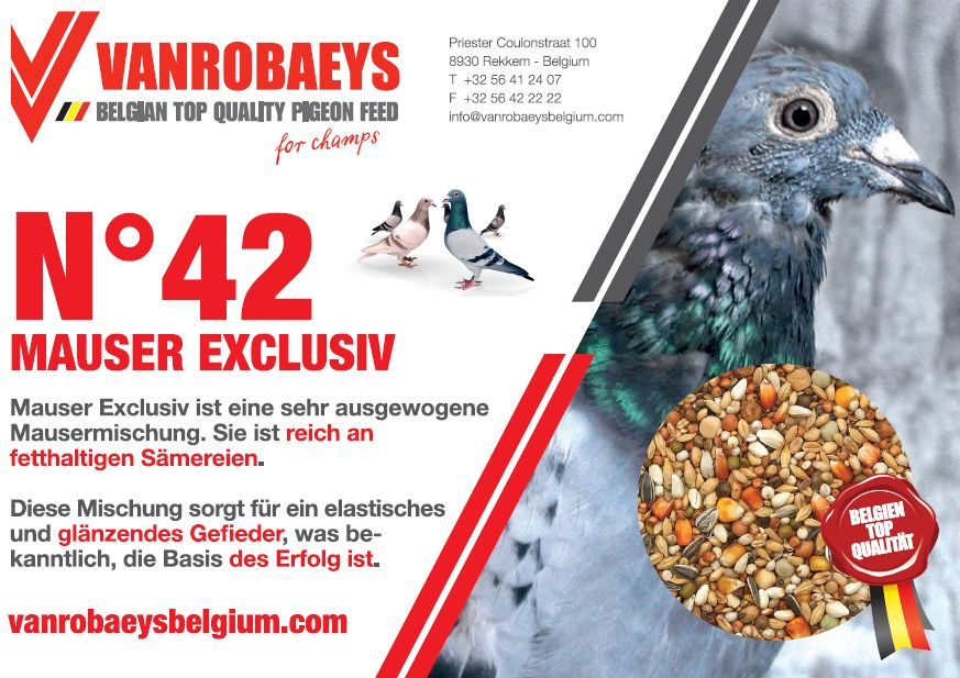 vanrobaeys mauser 42