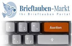 auktion banner neu