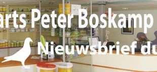 Im DEZEMBER 2014 – von Tierarzt Peter Boskamp